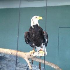 Photo taken at South Carolina Aquarium by Jennifer on 11/12/2012