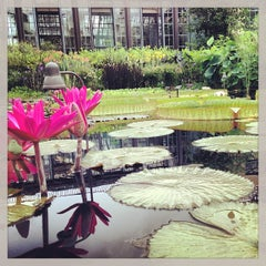 Photo taken at Longwood Gardens by Esther P. on 7/24/2013