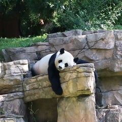 Photo taken at Smithsonian National Zoological Park by Zach S. on 7/29/2013