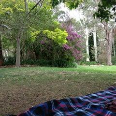 Photo taken at E.G. Waterhouse National Camellia Gardens by Gavin B. on 1/19/2013