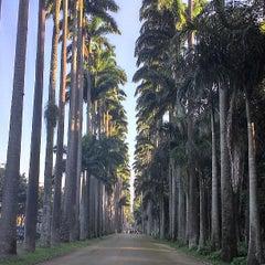 Photo taken at Jardim Botânico do Rio de Janeiro by Iane F. on 7/21/2013
