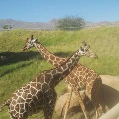 Photo taken at The Living Desert Zoo & Botanical Gardens by Adam C. on 10/9/2012