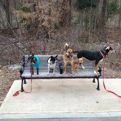 Photo taken at Piedmont Park Dog Park by Justin H. on 3/2/2013