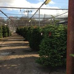 Photo taken at Houston Garden Center by Sara P. on 12/1/2012