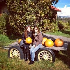 Photo taken at Applewood Farm Winery by Jenn Y. on 10/20/2013