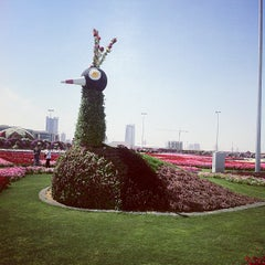 Photo taken at Dubai Miracle Garden by Omar on 3/11/2013