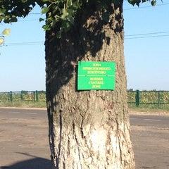 Photo taken at МАПП «Виноградівка» (UA-MD) by Roman on 8/4/2013