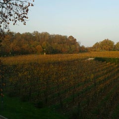 Photo taken at L'Albereta Relais & Chateaux by Marco G. on 11/21/2012