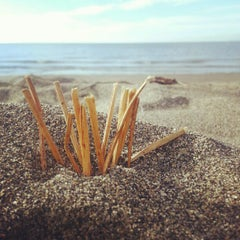Photo taken at Wreck Beach by Σαμαν Π. on 10/1/2012
