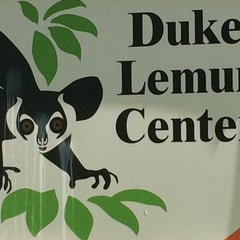 Photo taken at Duke Lemur Center by Amy on 4/27/2015