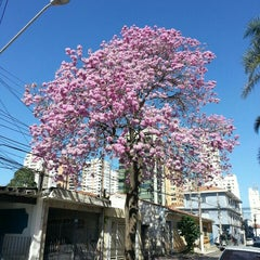 Photo taken at Chácara Santo Antônio by Joao A. on 6/29/2015