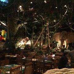 Photo taken at Rainforest Cafe Dubai by Yulia V. on 4/27/2015