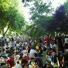 Photo taken at Taksim Gezi Parkı by Zafer Ö. on 7/16/2013