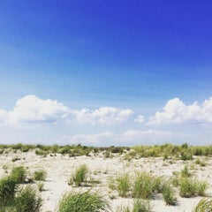 Photo taken at Robert Moses State Park - Field 5 by Niena on 8/2/2015