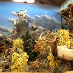 Photo taken at Cabela's by Jennifer P. on 12/22/2012