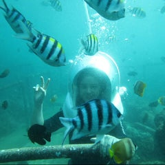 Photo taken at BMR Dive & Water Sports by Ratu R. on 6/24/2013