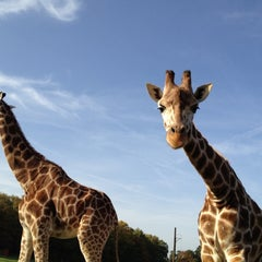 Photo taken at Serengeti Park by Dirk on 10/20/2012