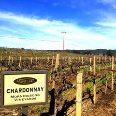 Photo taken at Dry Creek Vineyard by Jenn C. on 2/16/2015
