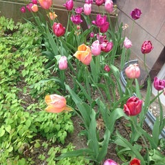 Photo taken at Alumnae House - Smith College by Jenny B. on 5/16/2015
