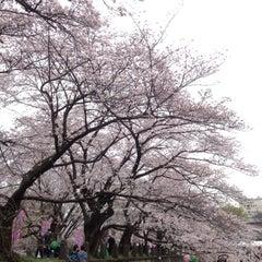 Photo taken at 文化放送川口送信所 by かぐやん on 4/2/2016