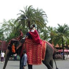 Photo taken at สวนนงนุช (Nong Nooch Garden & Resort) by Jirawat S. on 5/19/2013