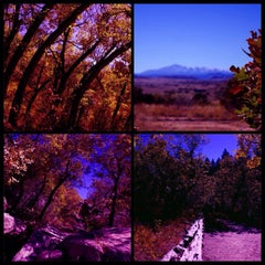 Photo taken at Castlewood Canyon State Park by Tanya on 10/4/2014