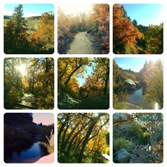Photo taken at Castlewood Canyon State Park by Tanya on 10/13/2013
