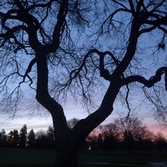 Photo taken at Cheesman Park by Casey D. on 5/14/2013