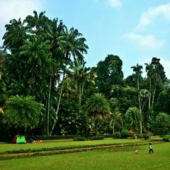 Photo taken at Kebun Raya Bogor by Irwan S. on 10/24/2012