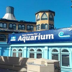 Photo taken at Heal the Bay's Santa Monica Pier Aquarium by Camera G. on 4/8/2013
