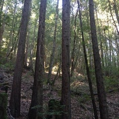 Photo taken at El Corte De Madera Creek by Adam G. on 11/13/2012