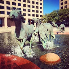 Photo taken at The Mustangs of Las Colinas by Erik James A. on 11/19/2014