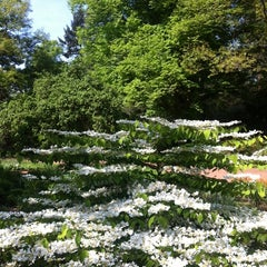 Photo taken at Stadtpark Hannover by Katharina C. on 5/5/2014