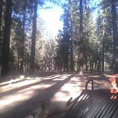 Photo taken at Barton Flats Campground by Jesus C. on 10/7/2012
