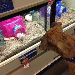 Photo taken at PetSmart by Craig H. on 6/1/2013