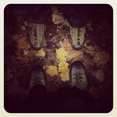 Photo taken at Cleveland Metroparks Brecksville Reservation by Nicki L. on 10/16/2012