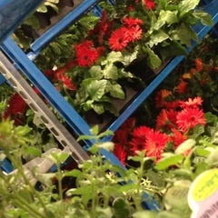 Photo taken at Costco by Shanna A. on 4/17/2013