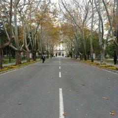 Photo taken at İstanbul Üniversitesi Rektörlüğü by Yusuf A. on 11/30/2012
