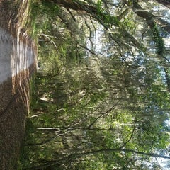Photo taken at Coffin Point Plantation by Shannon F. on 3/28/2015