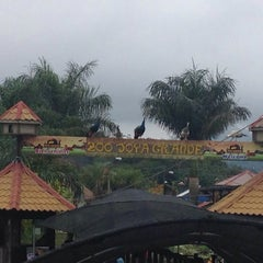 Photo taken at Zoologico Joya Grande by Ricardo C. on 11/1/2014