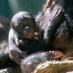 Photo taken at Zoologischer Garten Berlin by Zoologischer Garten Berlin on 8/7/2014