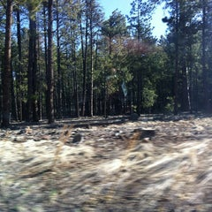 Photo taken at Coconino National Forest by Lilpup M. on 4/1/2013