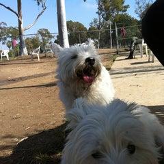 Photo taken at Costa Mesa Bark Park by Steve S. on 10/20/2011