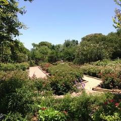 Photo taken at San Antonio Botanical Garden by Paulina R. on 6/5/2013