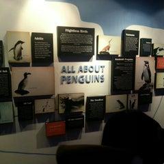 Photo taken at Manila Ocean Park by Landel Mae P. on 12/29/2012