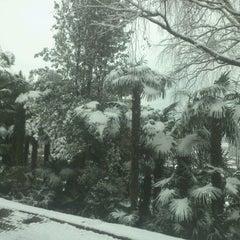 Photo taken at Montarina by Raimonds L. on 12/14/2012