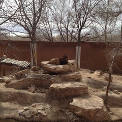 Photo taken at ABQ BioPark Zoo by Angelica on 3/8/2013