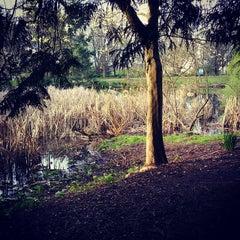 Photo taken at Charleson Park by Matt C. on 4/5/2015