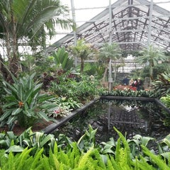 Photo taken at Garfield Park Conservatory by Zach S. on 5/25/2013