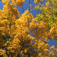 Photo taken at Purcell Park by Jessica N. on 10/13/2015